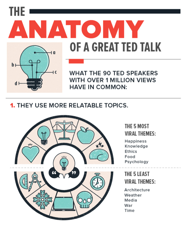 anatomy of Ted - The Big Picture