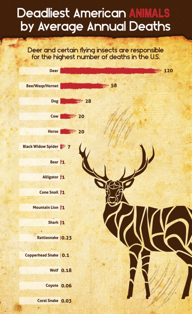 deadliest-animals